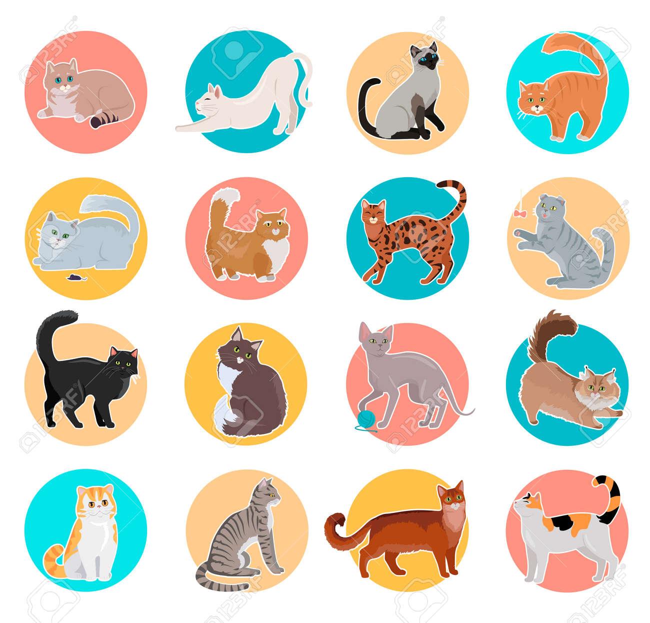 Vettoriale Set Di Icone Con I Gatti Disegno Vettoriale Piatto