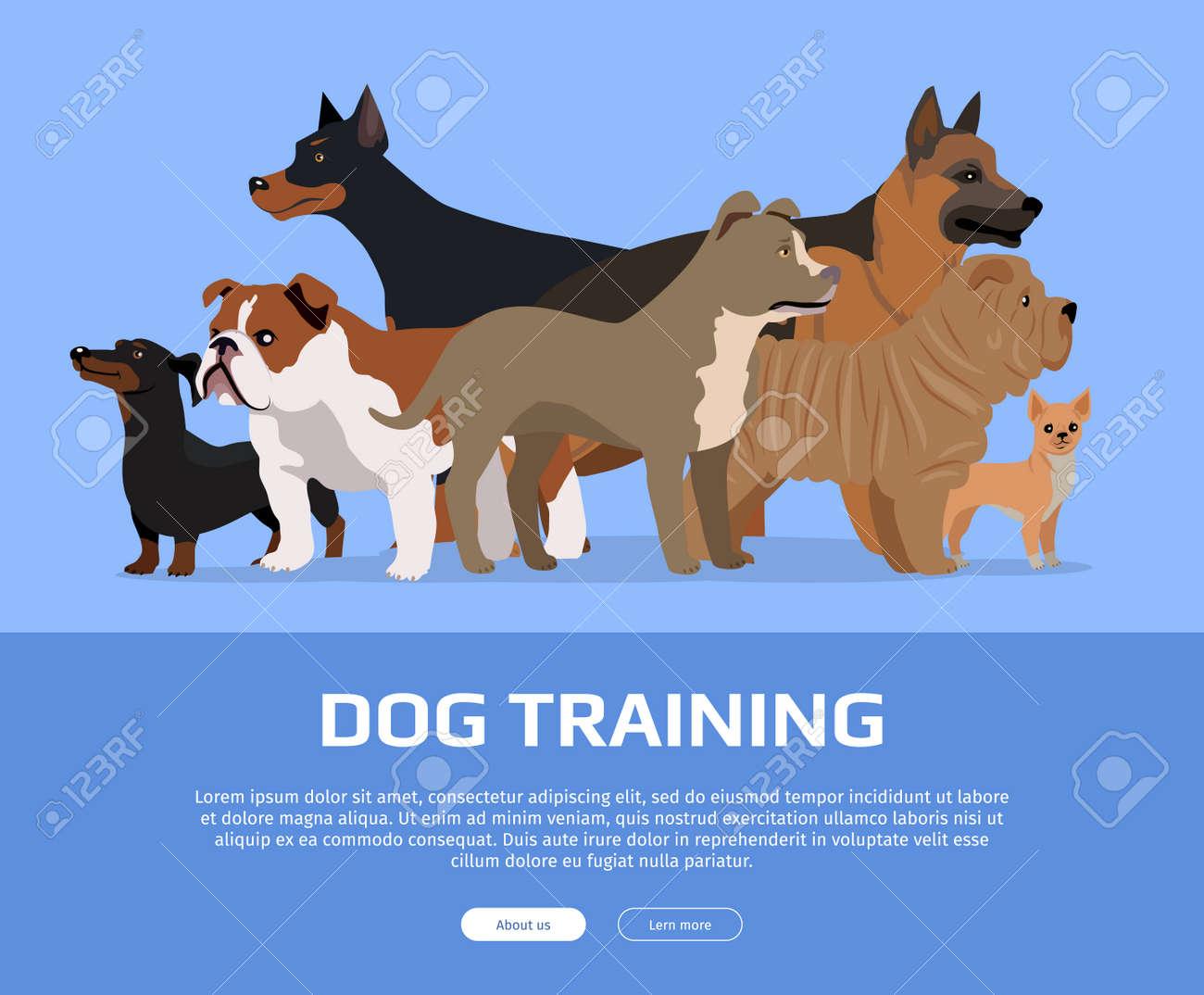 Dog Training Ads