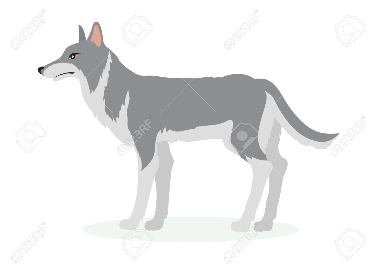Wolf Cartoon Vector Illustration in Flat Design - 88839253