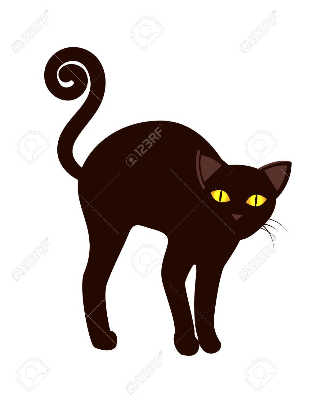 Black Cat Tail Long