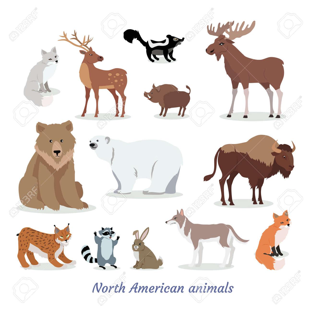 North American Animal Cartoon Flat Icons Set illustration. - 92331529