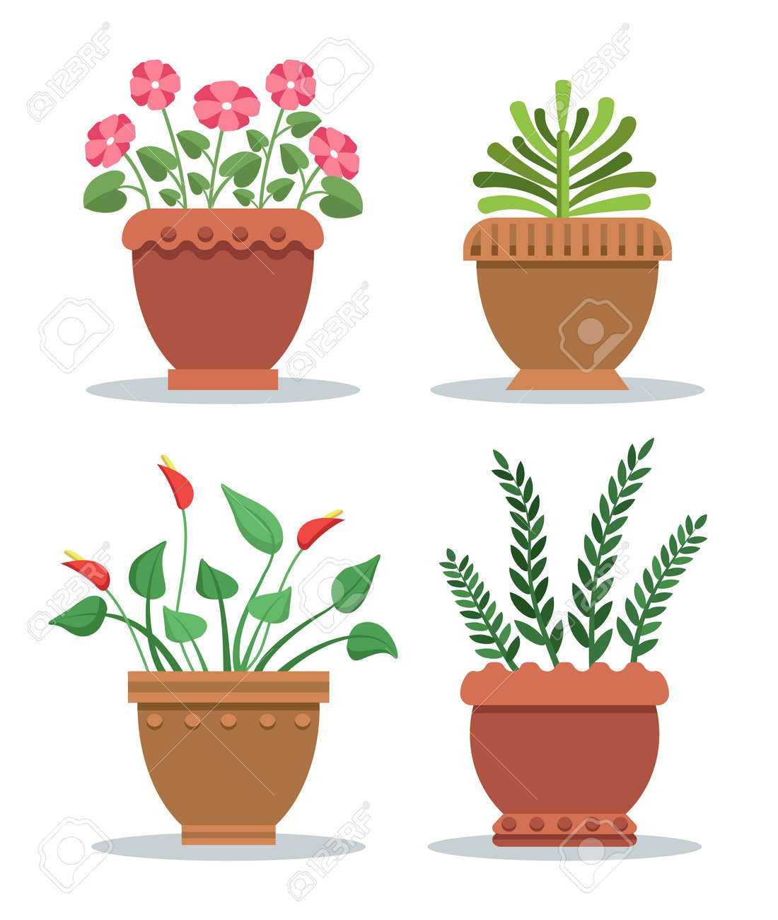 Indoor plants leafy with blossom in clay pots set. Flowers and..