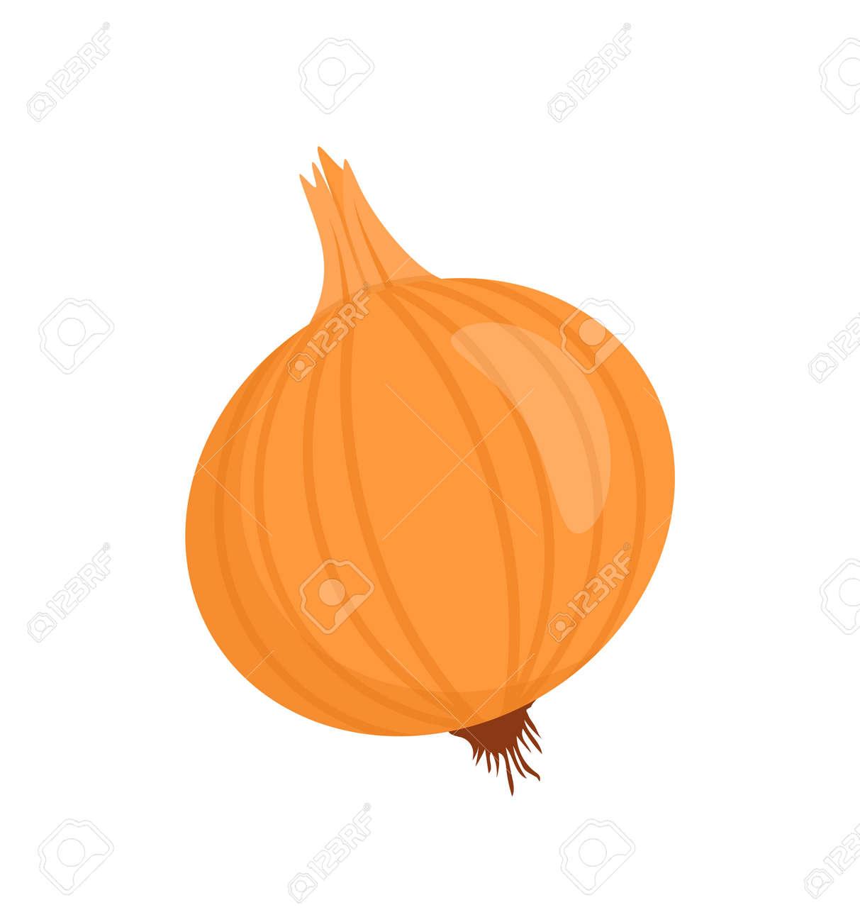Onion Isolated Vegetable Cartoon Vector Badge - 113273314