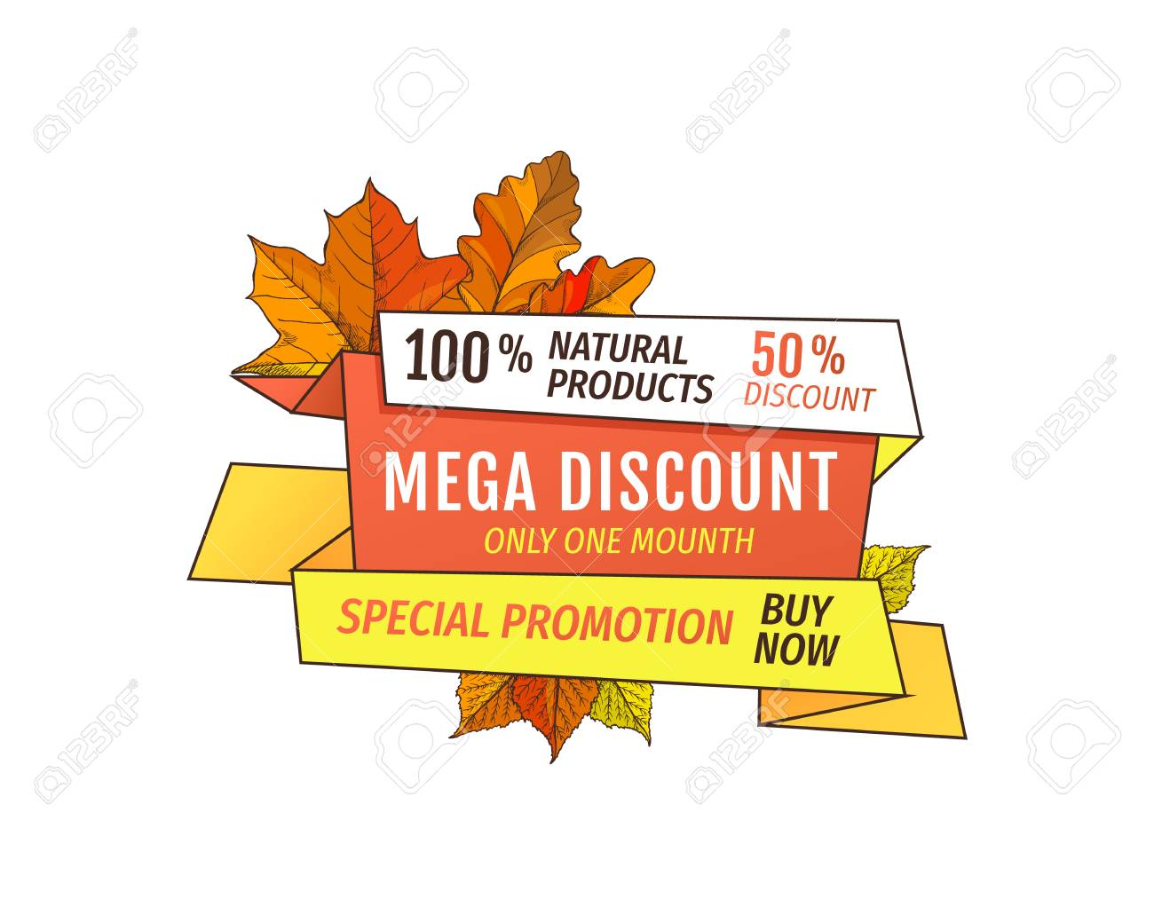 Special promotion discount on Thanksgiving day, exclusive offer buy now natural product label with maple leaves. Vector autumn sale label yellow foliage - 126588645