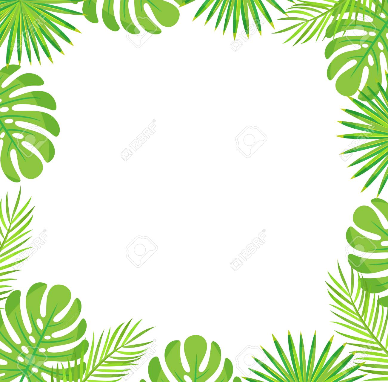 Tropical Leaves Border Isolated Green Leaves Of Palm And Monstera Royalty Free Cliparts Vectors And Stock Illustration Image 124935407 Find & download free graphic resources for leaves border. tropical leaves border isolated green leaves of palm and monstera