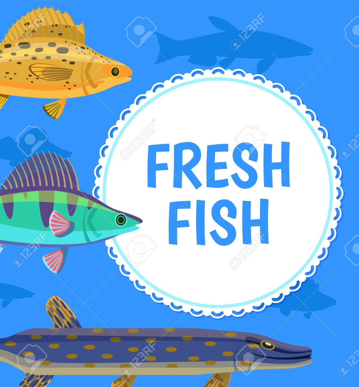 Fresh Fish Postcard With White Round And Cartoon Fishes Side Royalty Free Cliparts Vectors And Stock Illustration Image 123798840