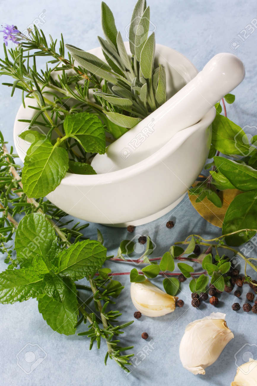 Mortar and pestle with fresh herbs, garlic and peppercorns. Stock Photo - 2586638