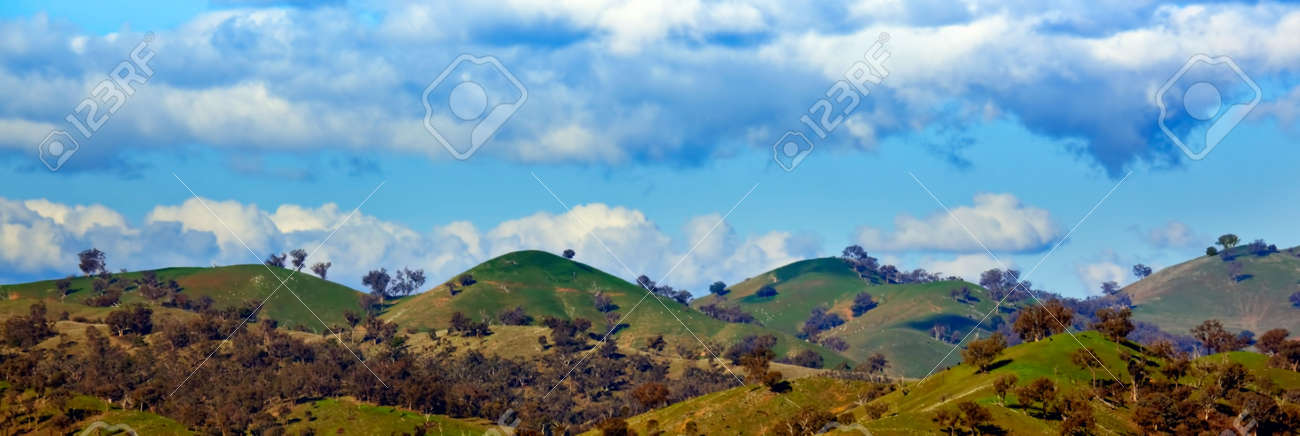 Panorama of rolling green hills with eucalyptus trees.  Southern New South Wales, Australia. Stock Photo - 5366436