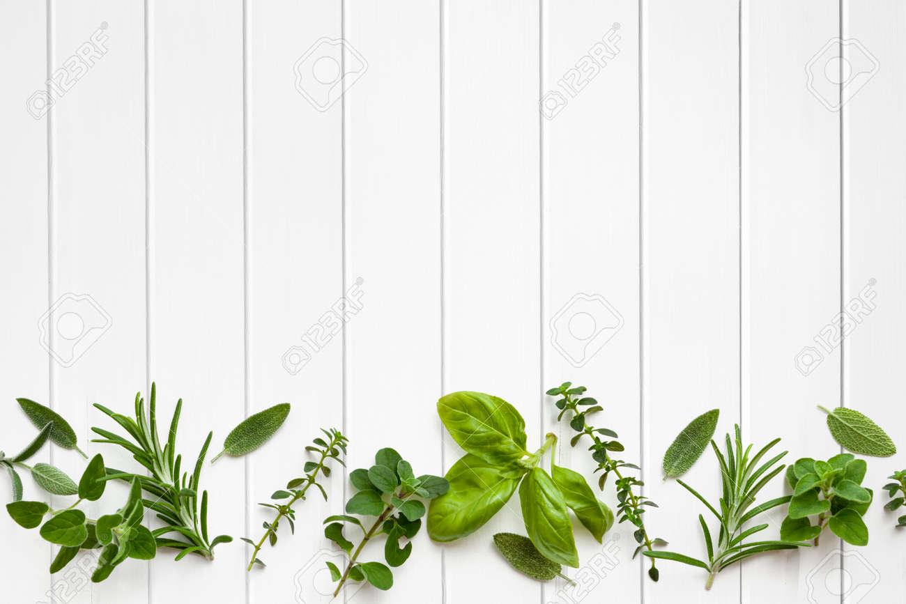 Fresh herbs border over white timber panel background. - 29867863