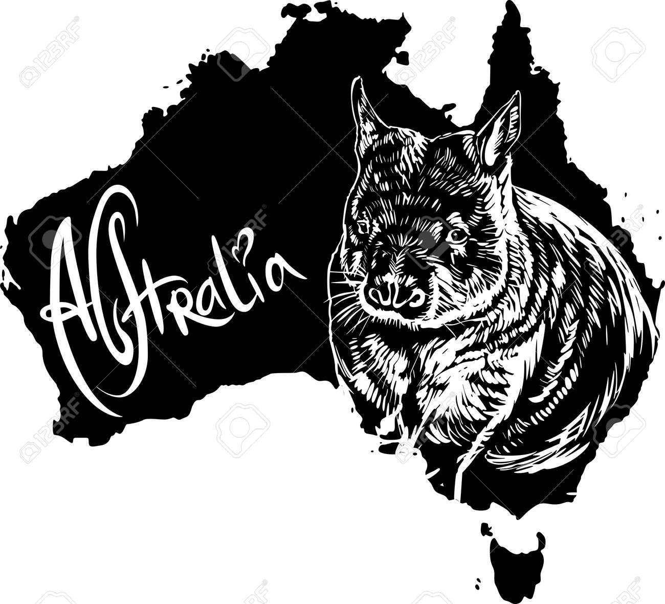 Wombat on map of Australia. Black and white vector illustration. Stock Vector - 15783358