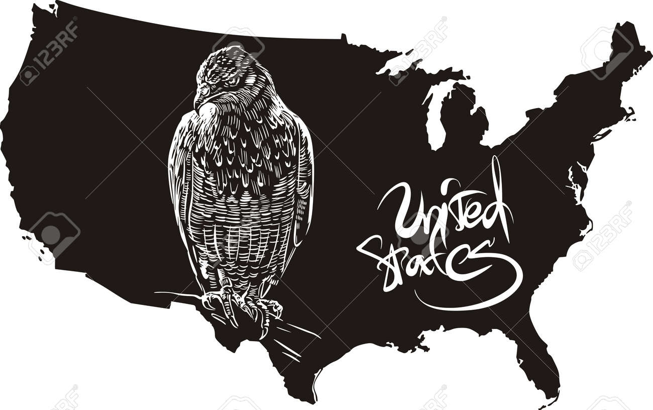 Hawk And US Outline Map Black And White Vector Illustration - Us map black and white vector