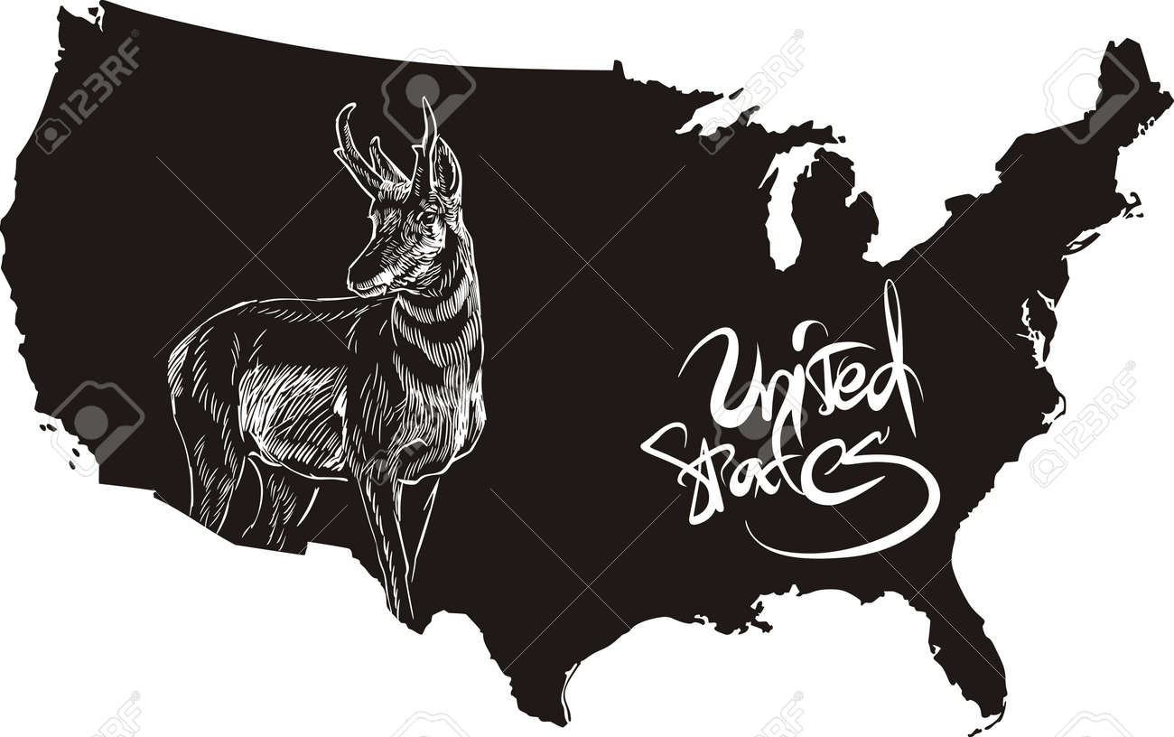 Free USA PowerPoint Map Free PowerPoint Templates Free USA Region - Us map template free
