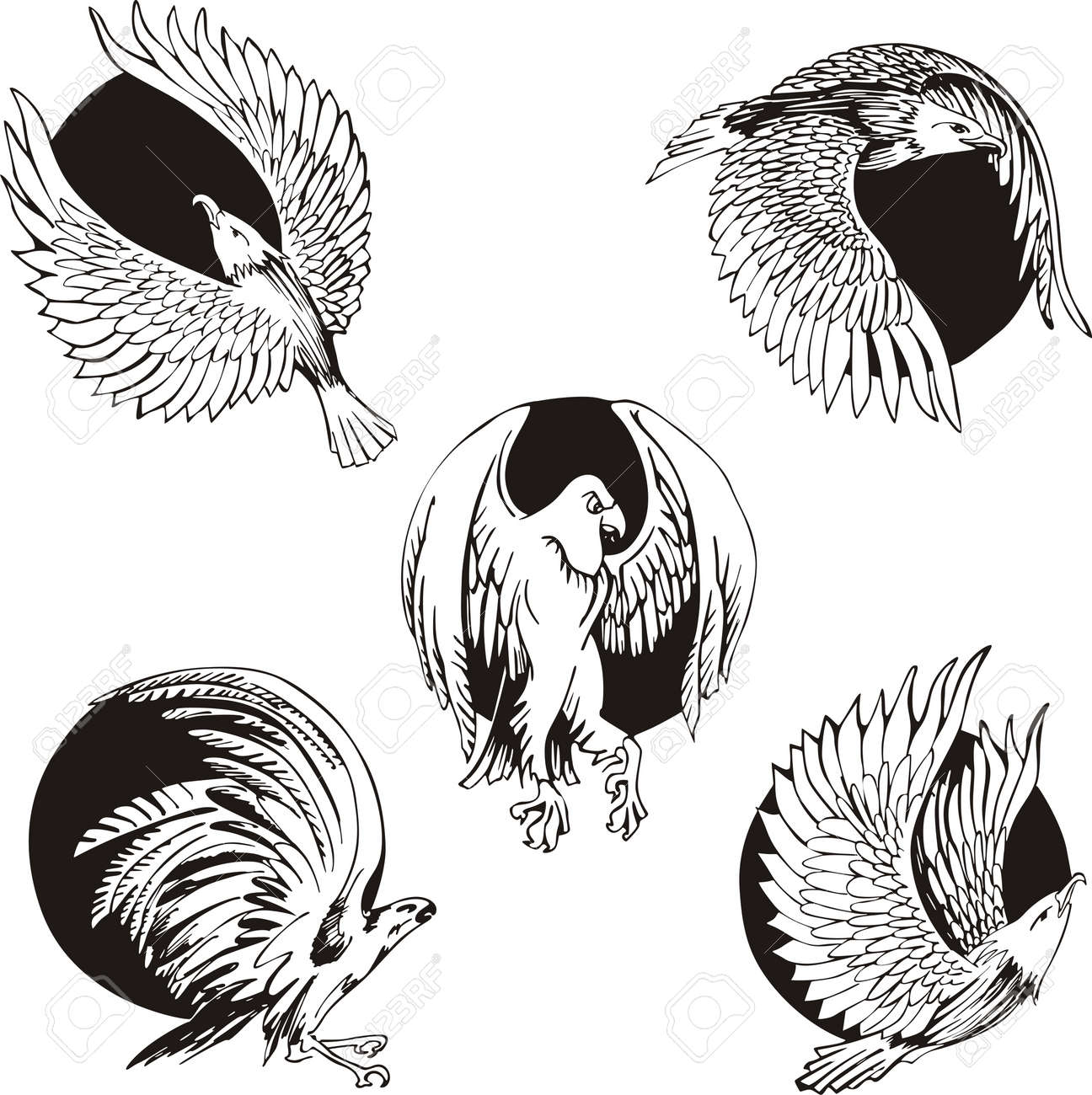 Round Designs With Eagles And Falcons. Set Of Black And White ...