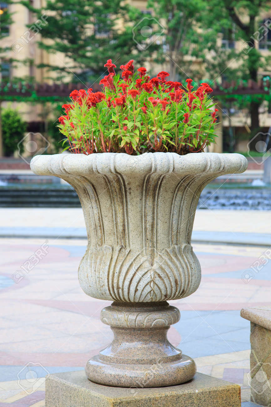 Ornamental Stone Flowerpot In GardenThe Flower On Vase Is Called