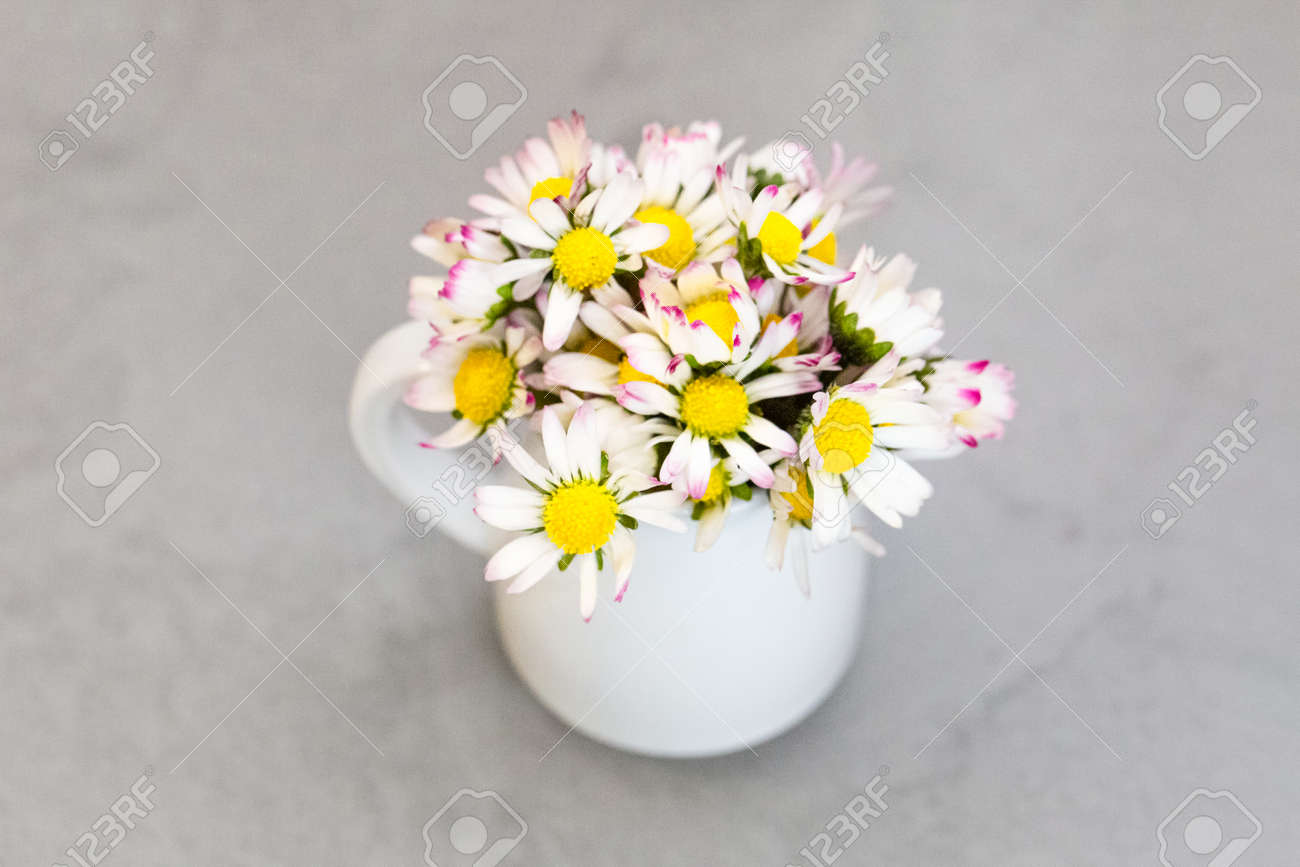 Daisy flowers in ceramic white vase on ultimate gray - 165777208