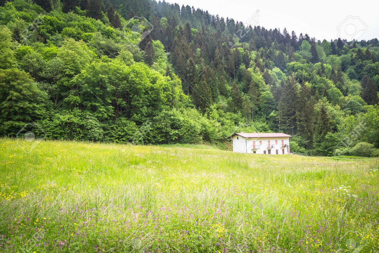 House in the mountains in the middle of wild nature - 166782542
