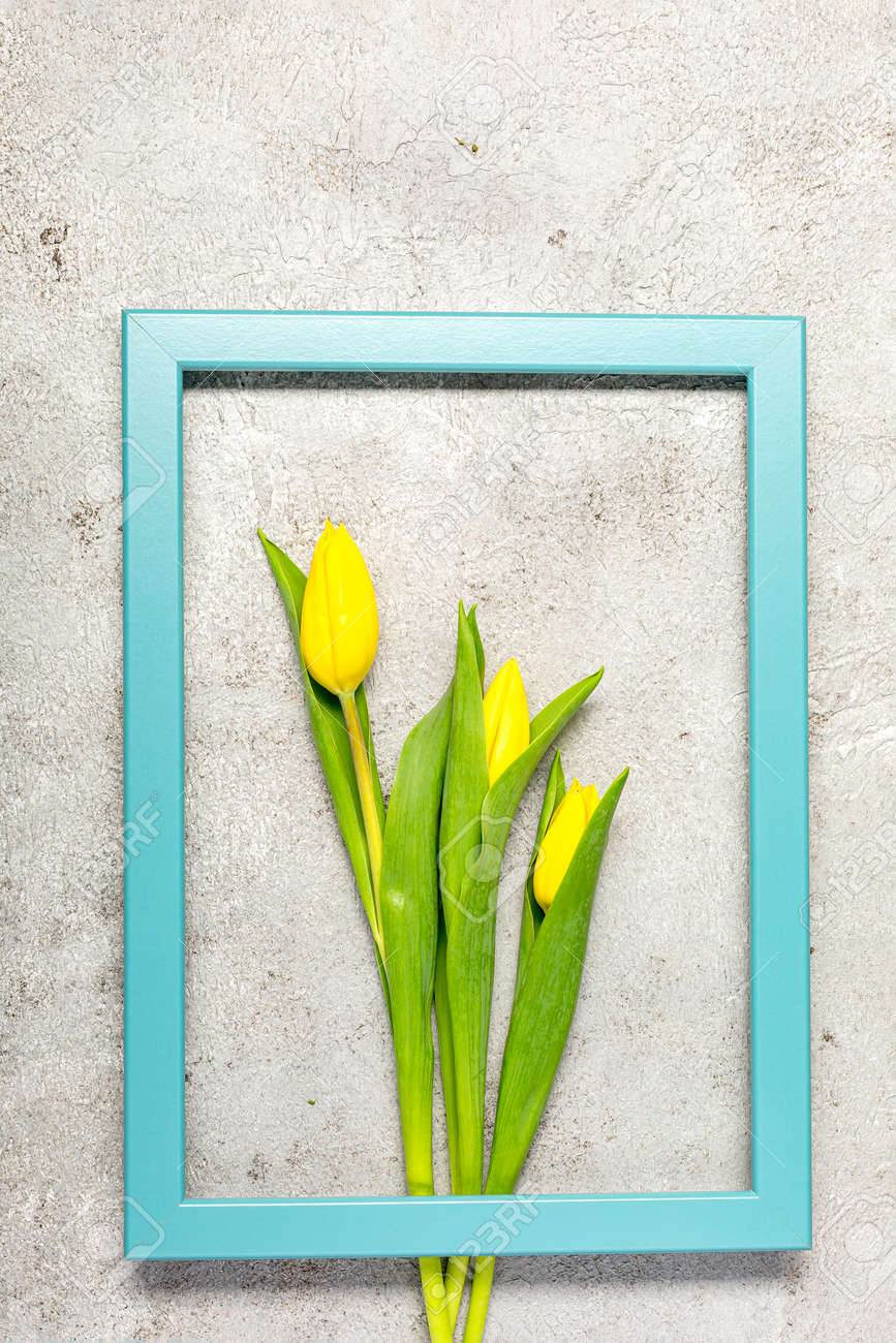 Fresh yellow tulip flowers on ultimate gray wall - 166944026