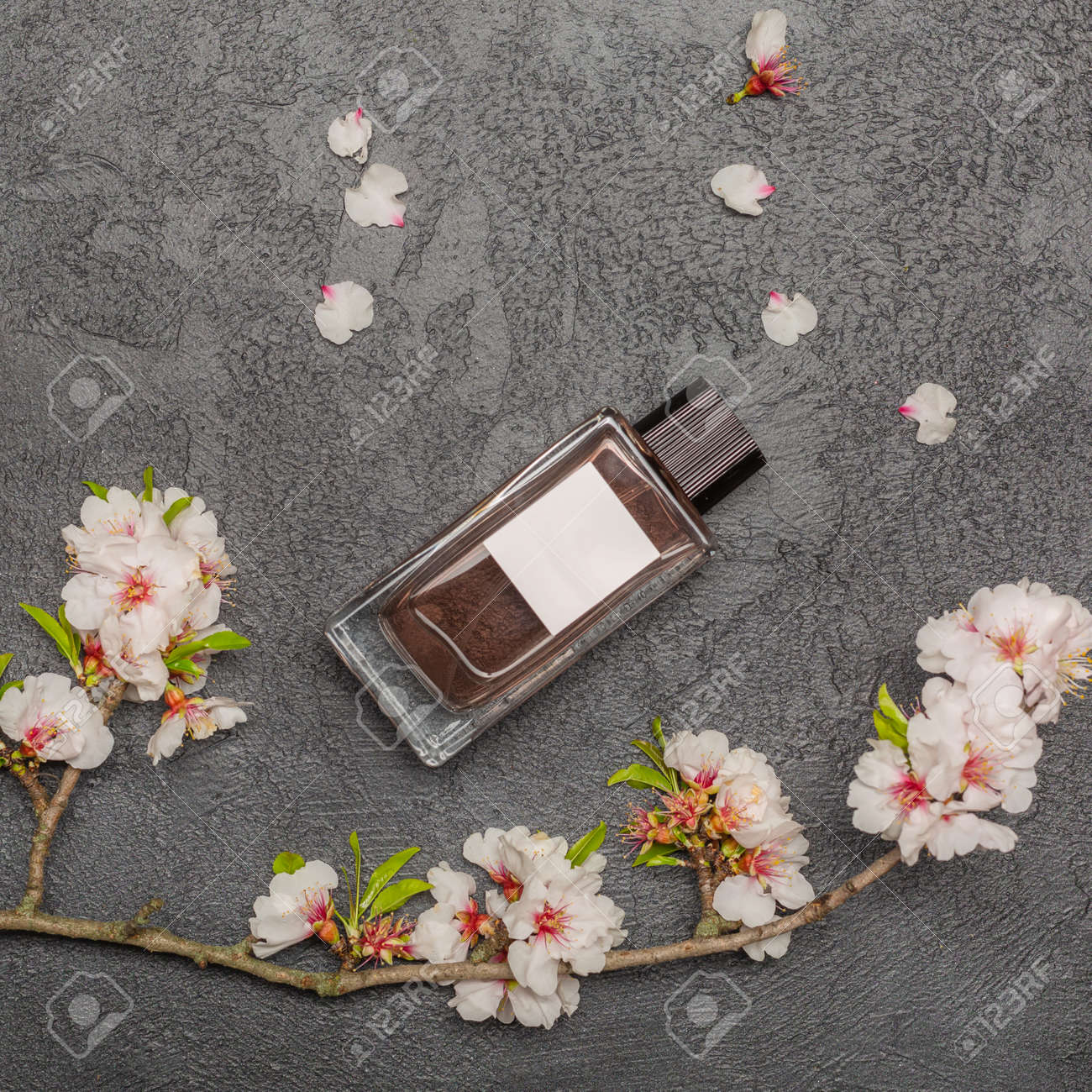 Flat lay banner with branch of cherry blossom flowers - 167193718
