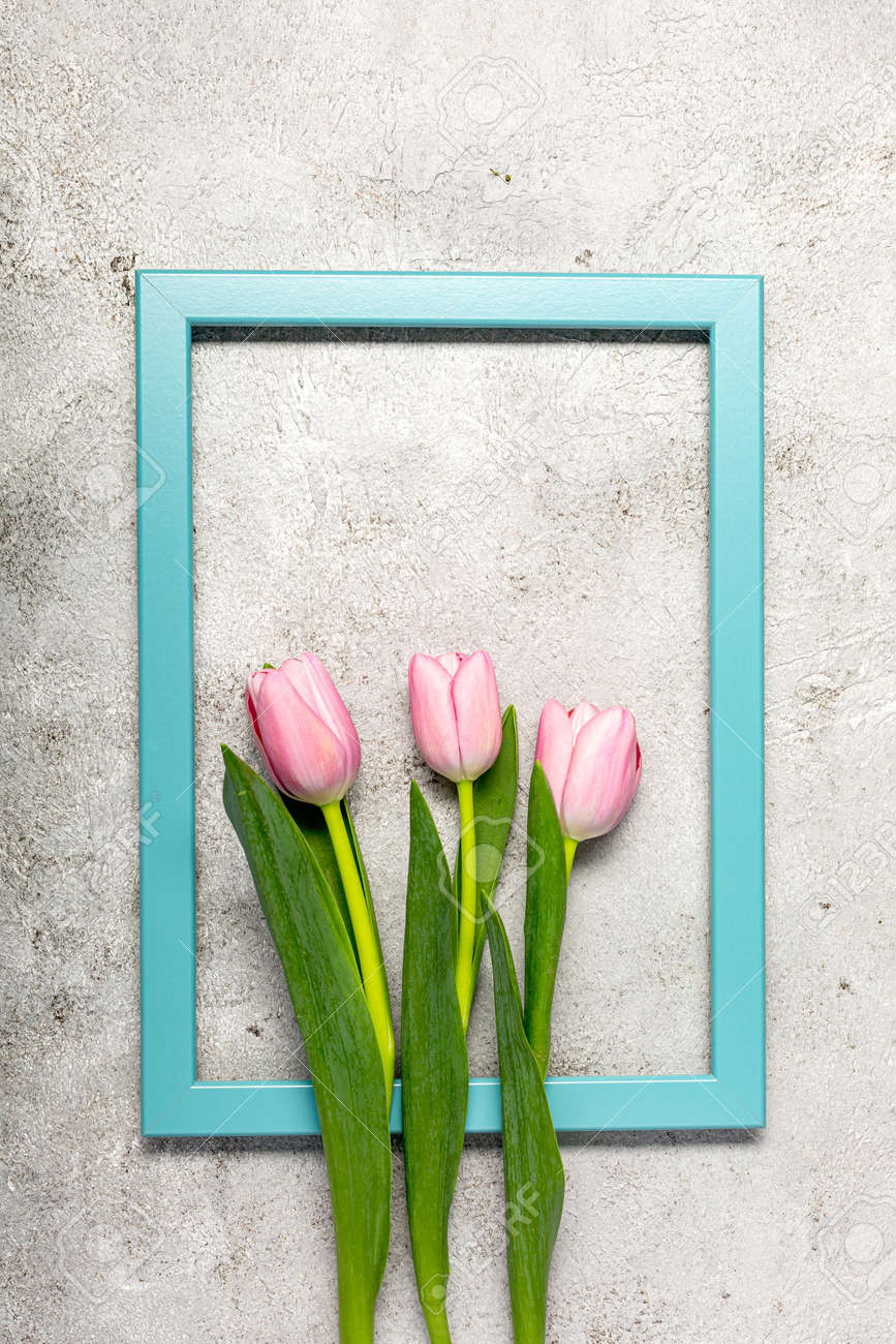Fresh pink tulip flowers on ultimate gray wall - 167193511