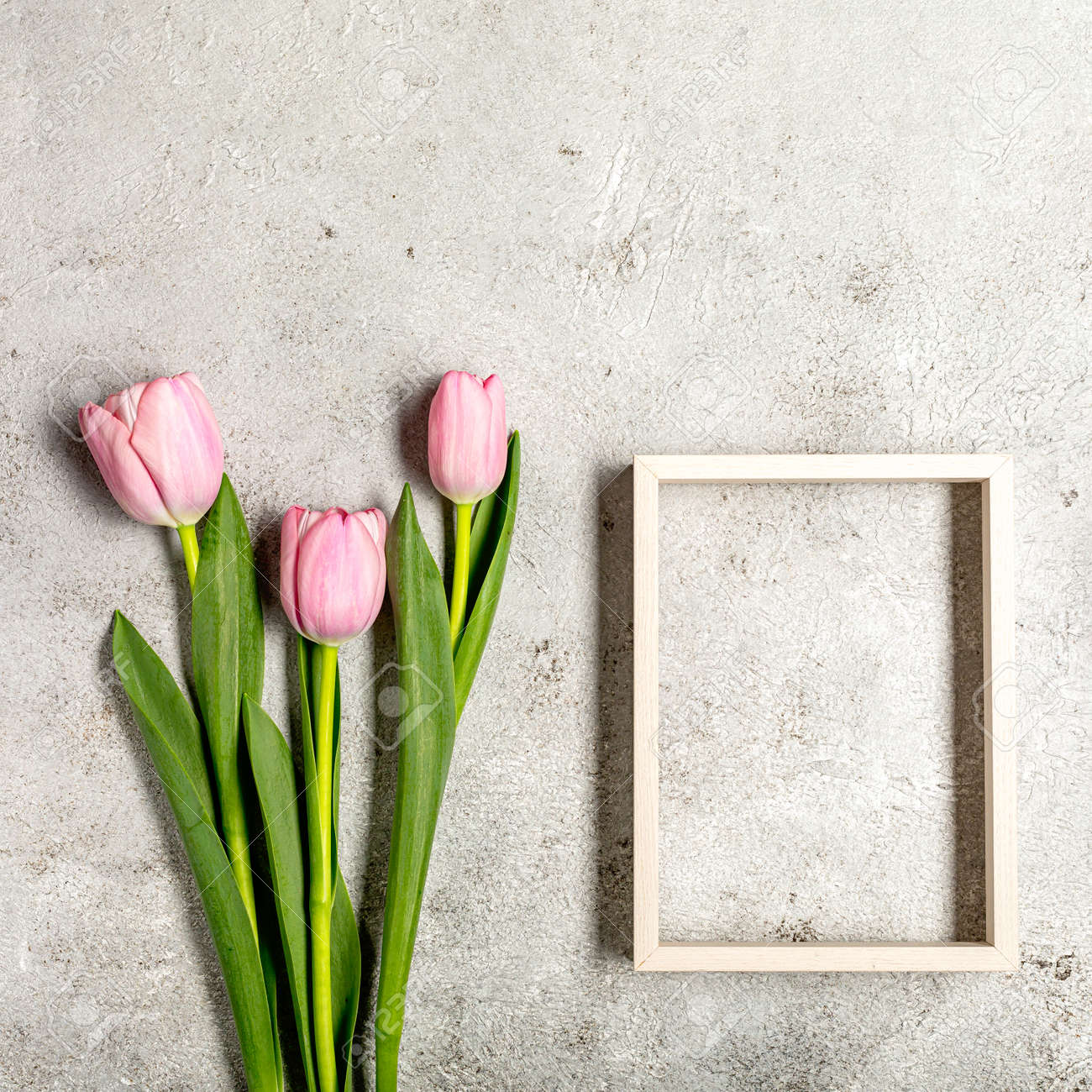 Fresh pink tulip flowers on ultimate gray wall - 167193349