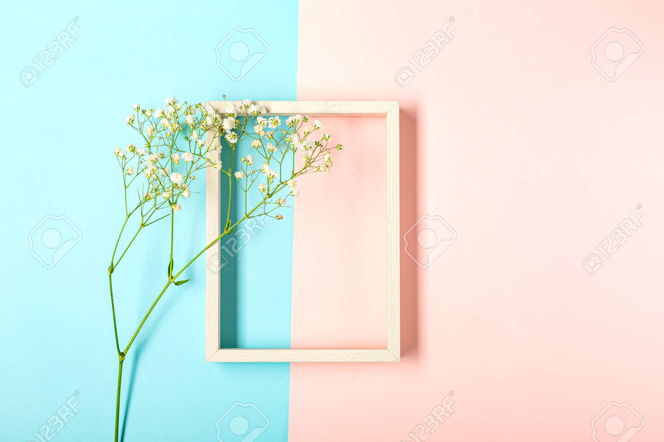 Creative banner with fresh white babys breath flower - 167193808
