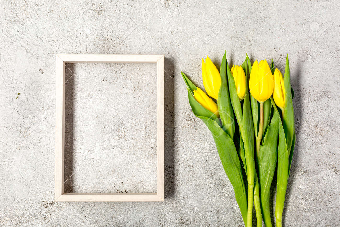 Fresh yellow tulip flowers on ultimate gray wall - 167779836