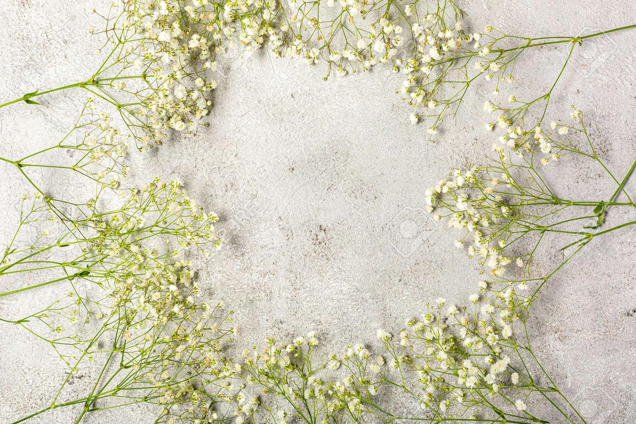 Creative banner with fresh white babys breath flower - 167779841