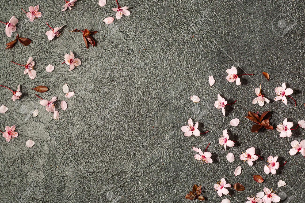 spring background with fresh flower on black background. - 167779844