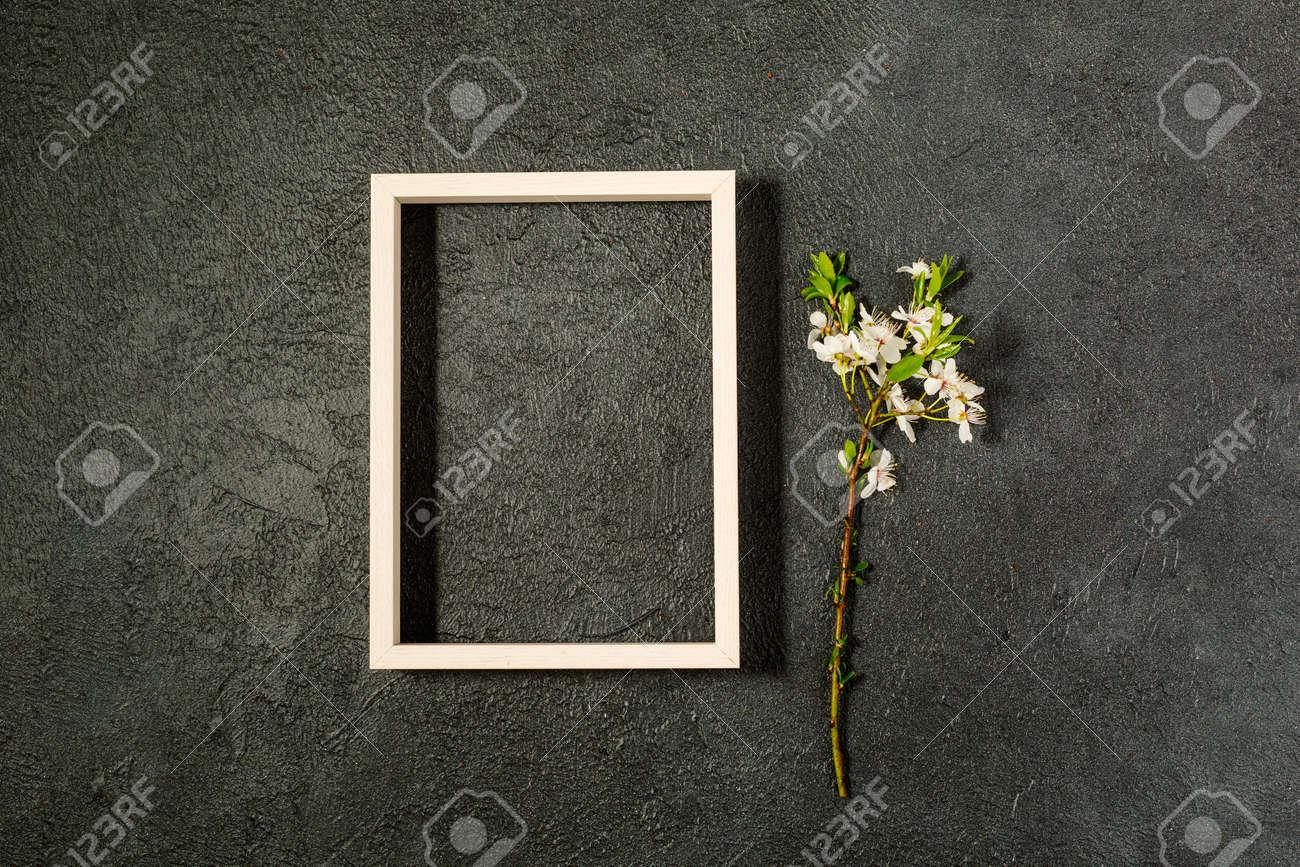 spring background with fresh flower on black background. - 167779848