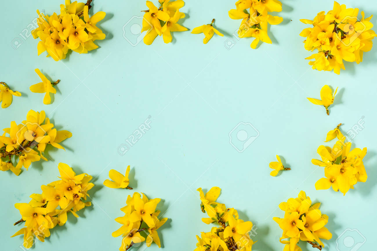 Pattern with fresh yellow flowers on pastel backround. - 167779849
