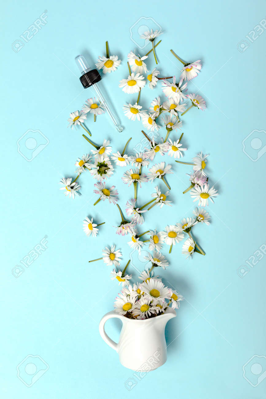 Pattern with daisy flowers and bottle on pink backround. - 167779881