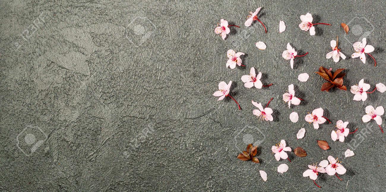 spring background with fresh flower on black background. - 167780049