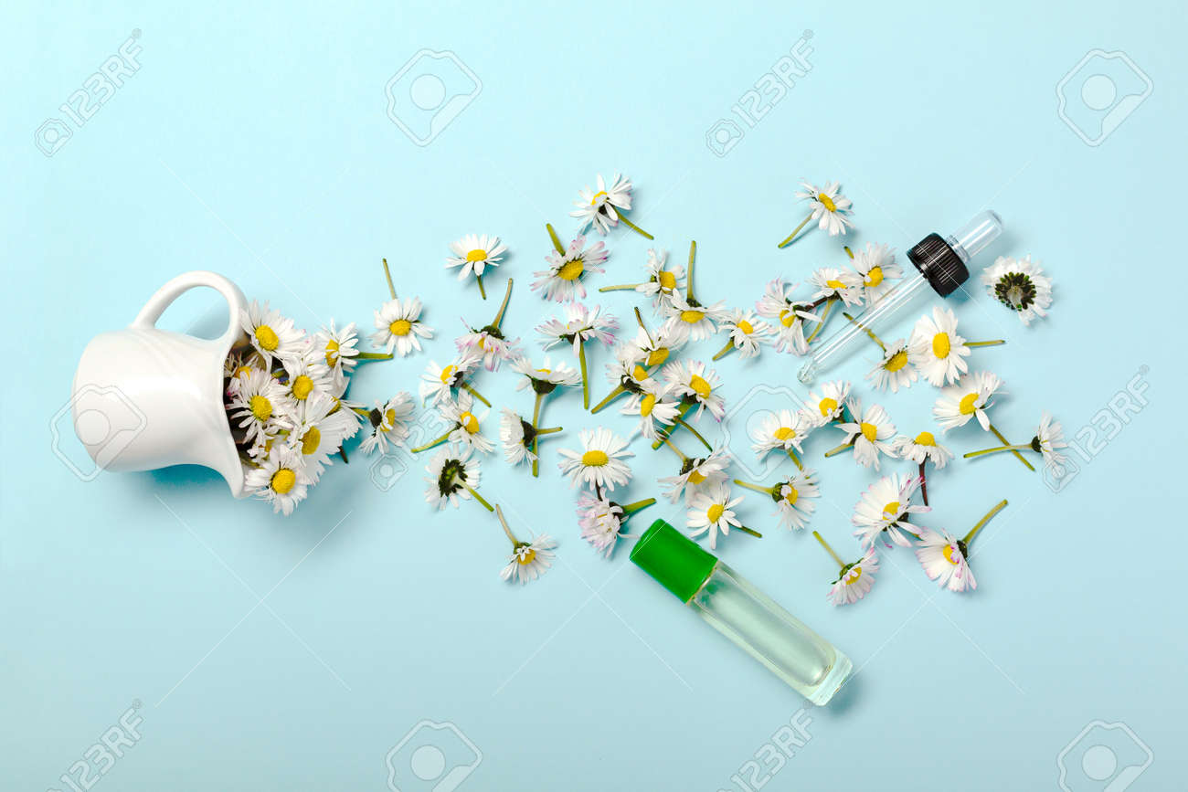 Pattern with daisy flowers and bottle on pastel blue - 167780052
