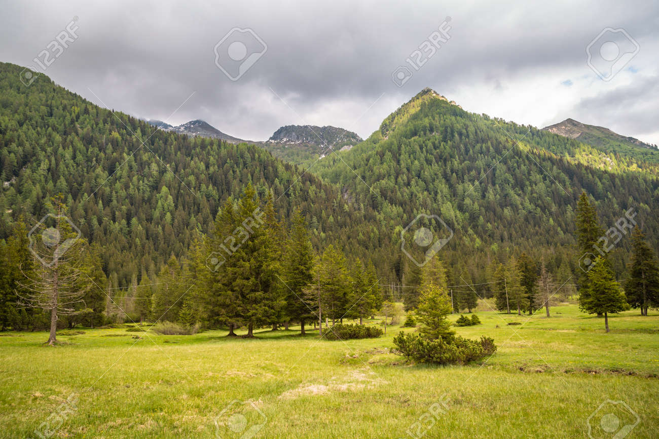 natural landscape with green mountain peaks in summer - 171243443