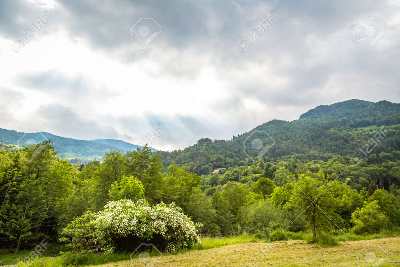natural landscape with green mountain peaks in summer - 171980380
