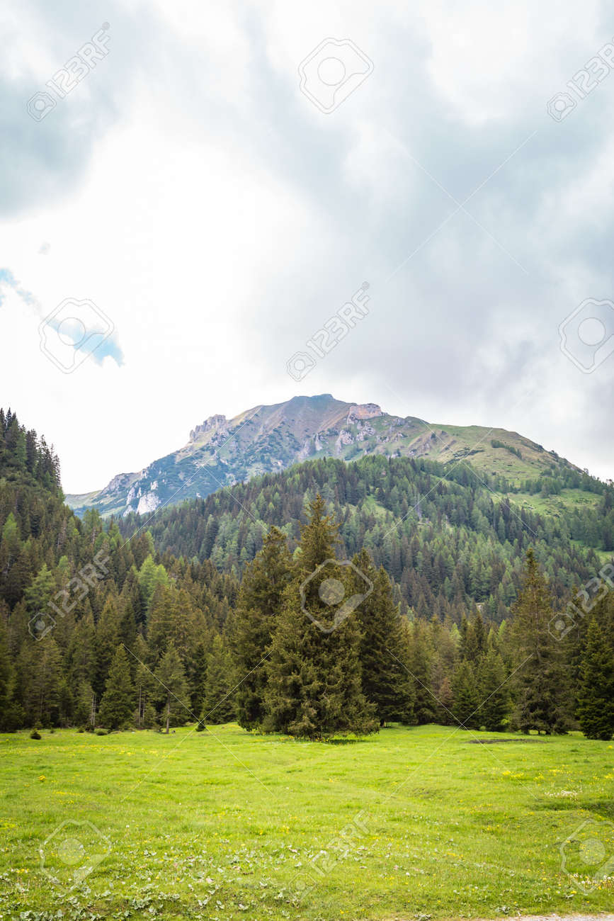 natural landscape with green mountain peaks in summer - 172289574