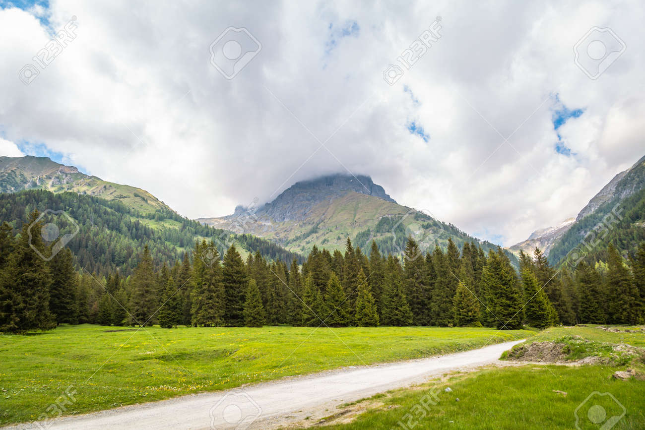 natural landscape with green mountain peaks in summer - 172905942