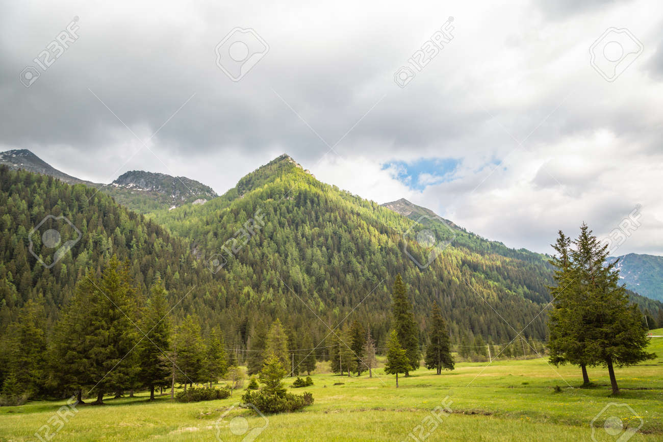 natural landscape with green mountain peaks in summer - 173342523