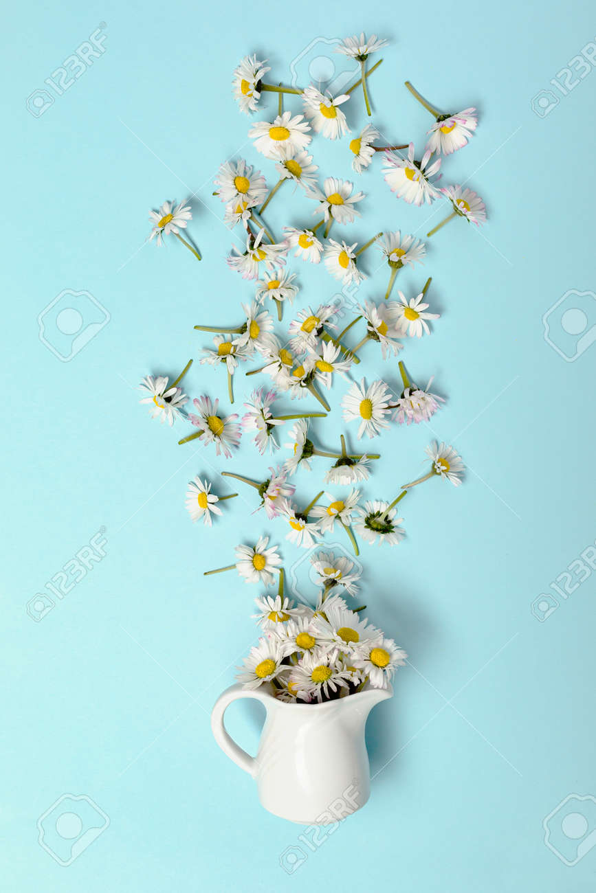 Chamomile come out of the cup on a blue pastel - 173251165