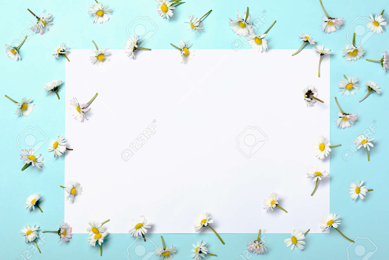 Natural reducing waste beauty on pastel blue background - 173251576