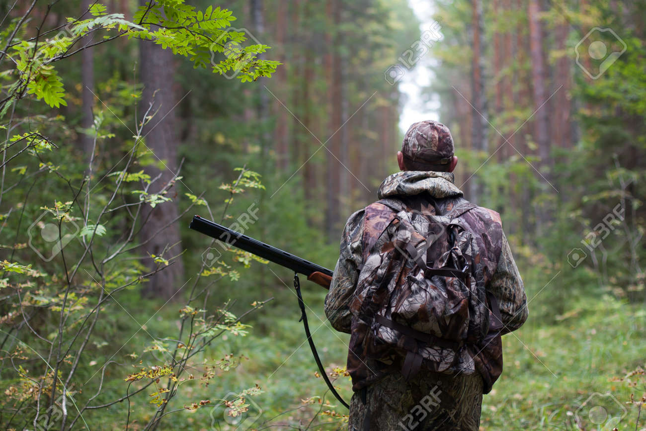 hunter walking with gun on the forest road - 34841644