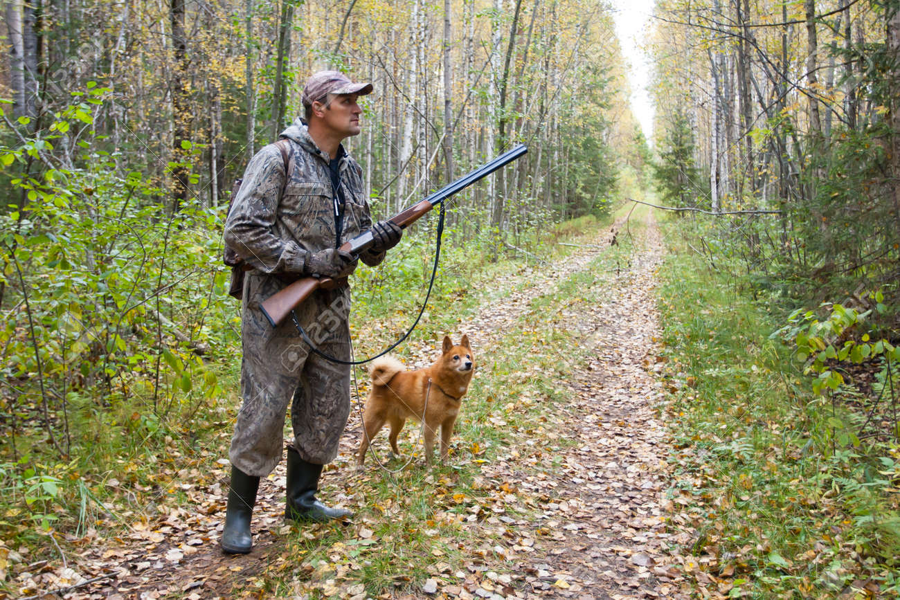 hunter with dog on the forest road during autumn hunt - 92319584
