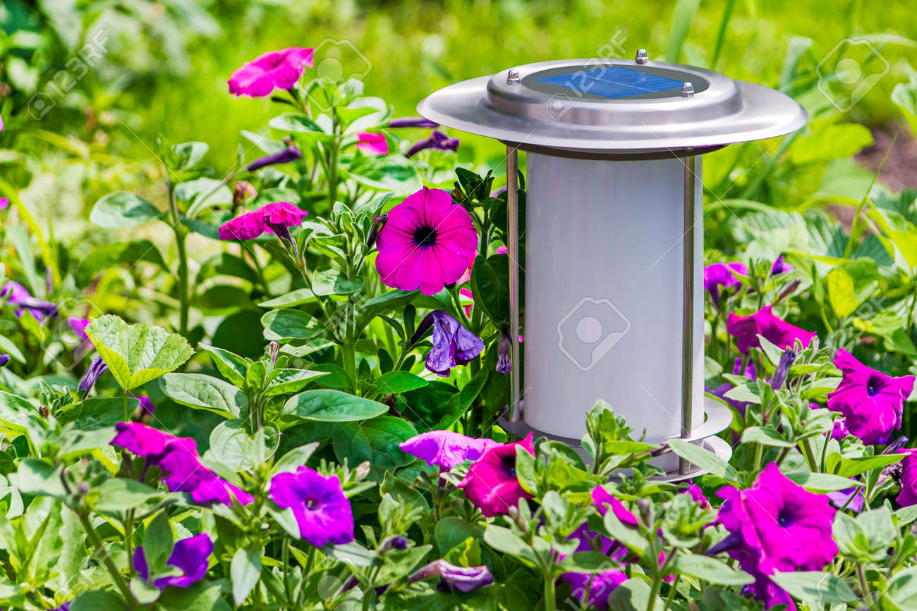 A solar-powered garden lamp - these save electricity and are very eco friendly Stock Photo - 14387820