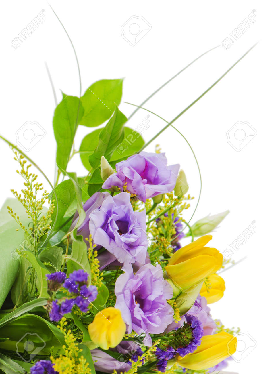 fragment of colorful bouquet of roses, tulips and freesia isolated on white background Stock Photo - 16811527