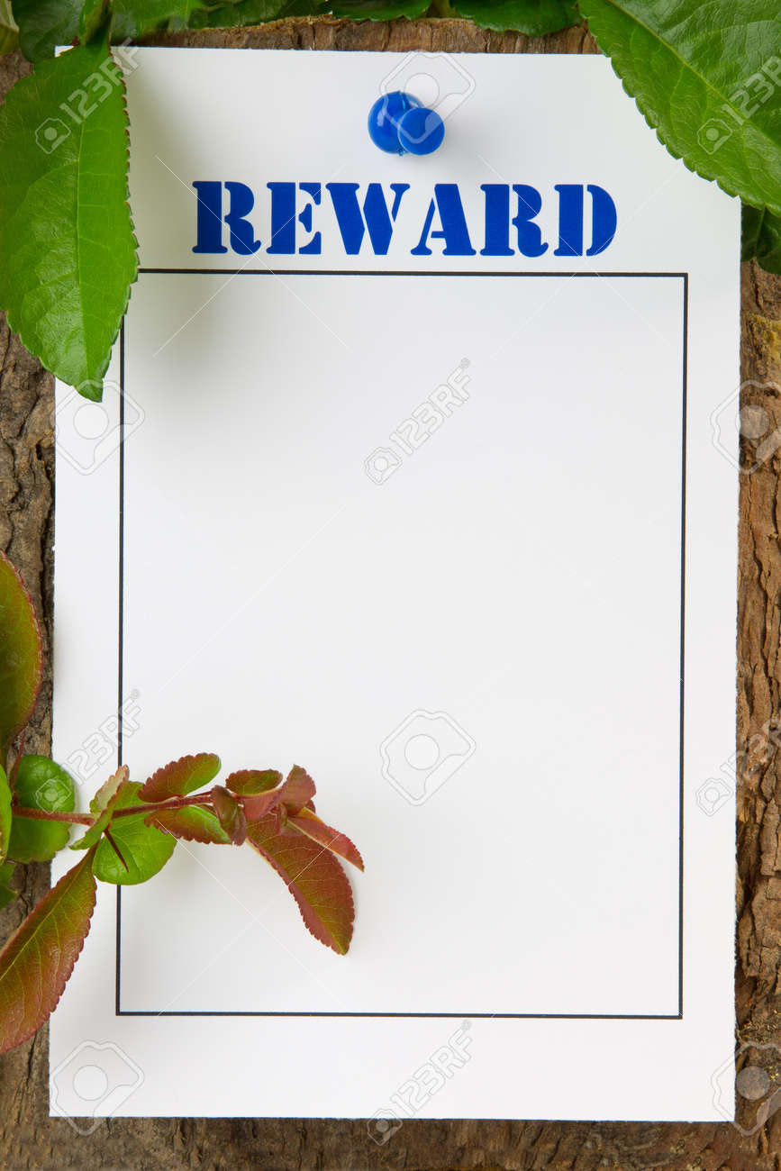 Reward notice pinned to a tree trunk - with copy space Stock Photo - 14465057