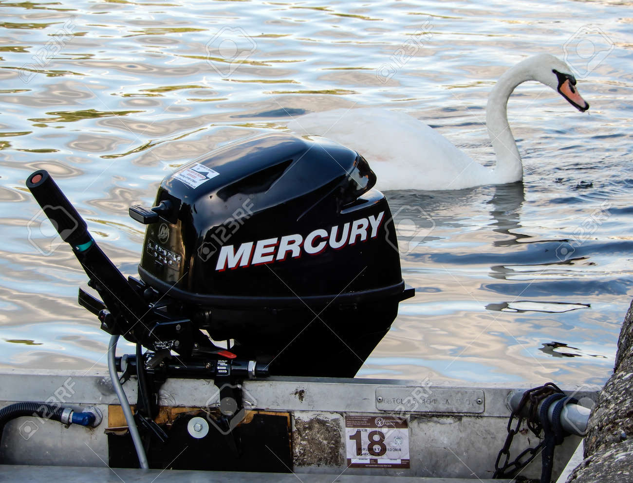 A Mercury 9 9 four stroke outboard motor and a mute swan on the