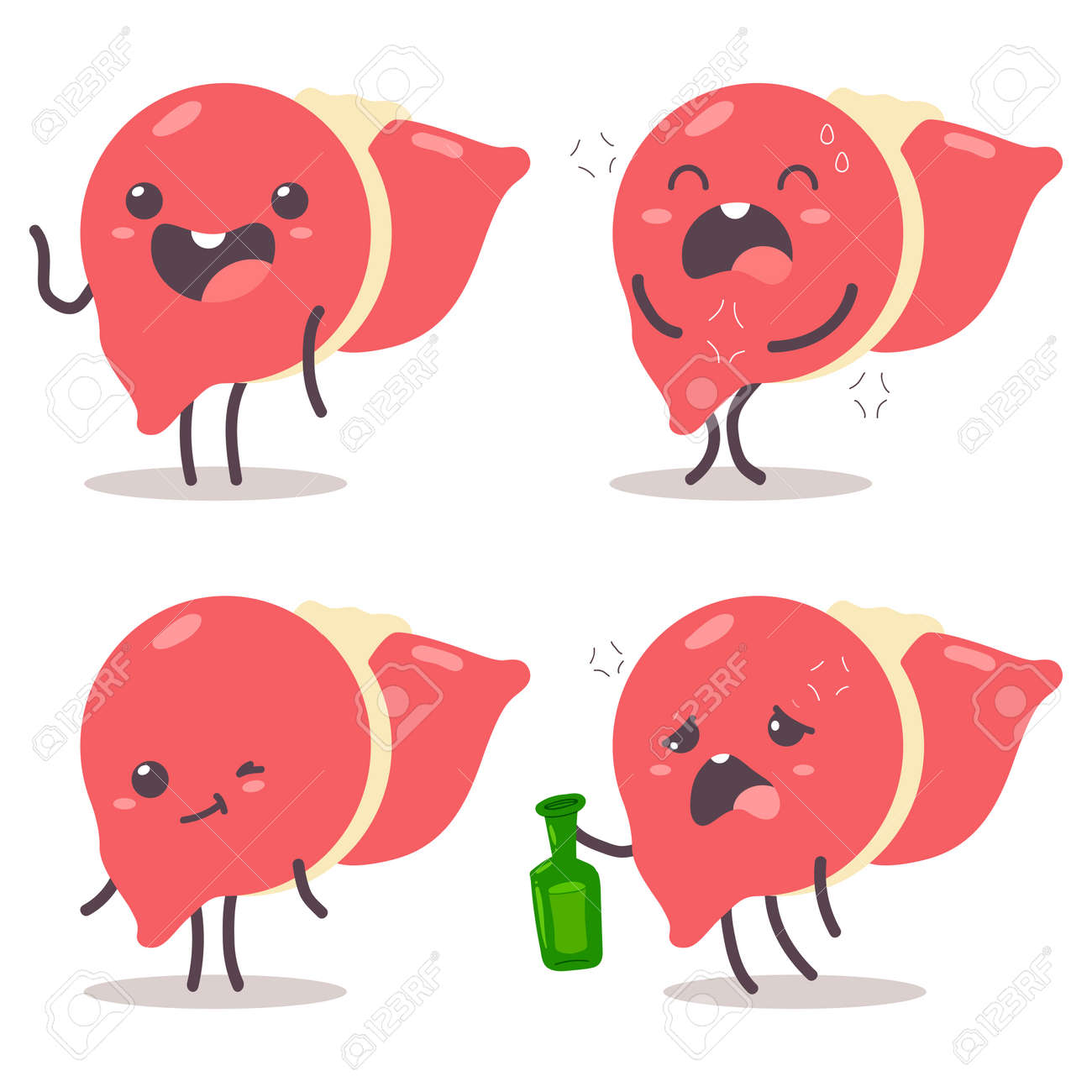 Cute liver vector cartoon characters set isolated on a white background. - 172749765