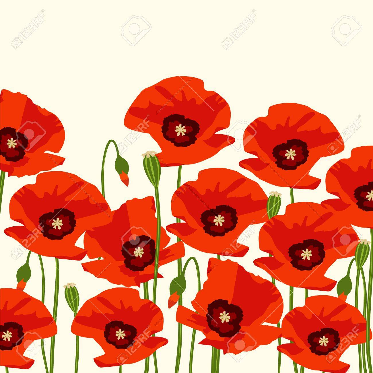 The red poppy flowers background vector illustration royalty free the red poppy flowers background vector illustration stock vector 69249388 mightylinksfo