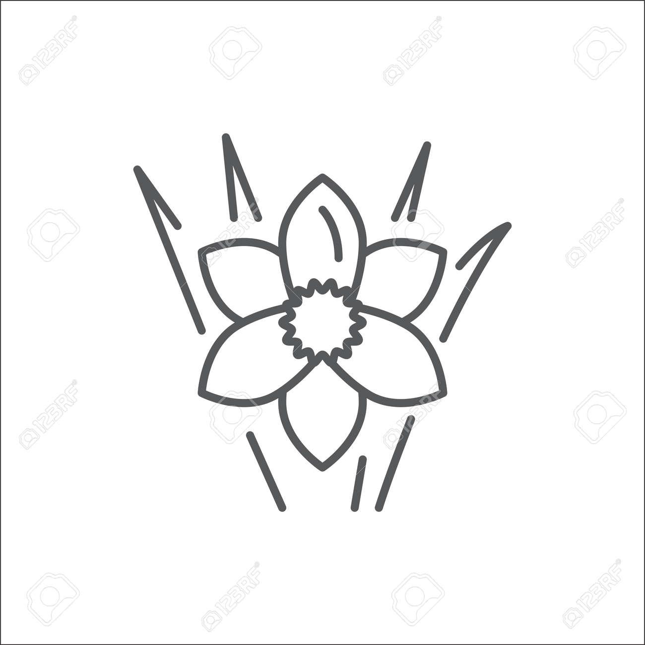 Narcissus editable line icon beautiful spring flower pixel perfect narcissus editable line icon beautiful spring flower pixel perfect vector illustration isolated on white background mightylinksfo