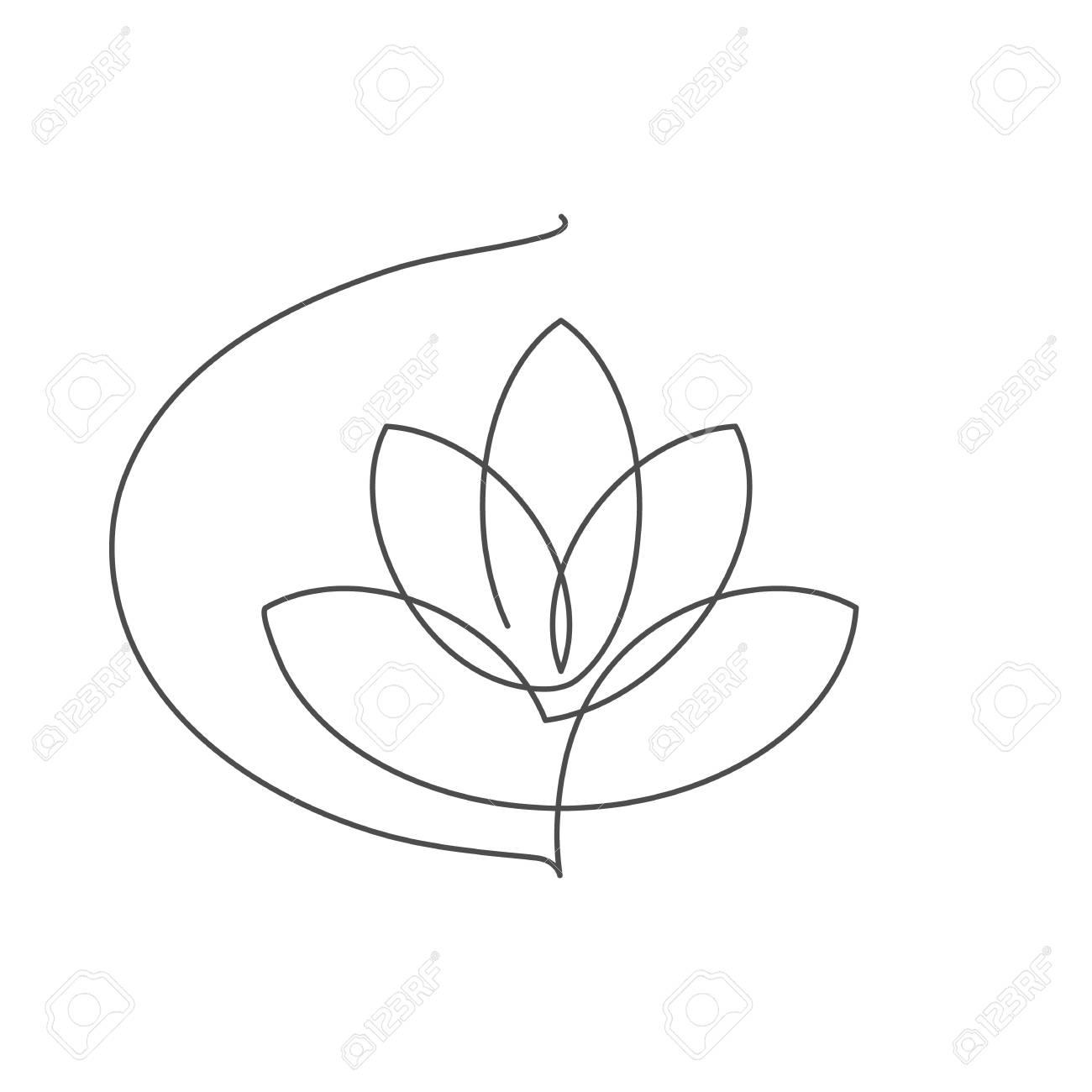 Flor De Loto Ilustración De La Flor De Vector Realista Con Trazo